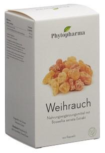 PHYTOPHARMA Weihrauch Kaps Ds 120 Stk